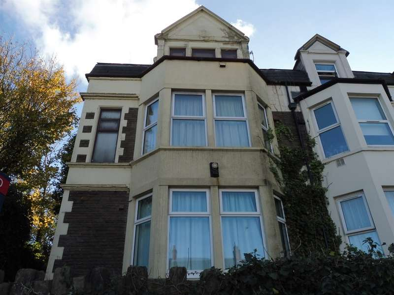 2 Bedrooms Ground Flat for sale in Newport Road, Cardiff