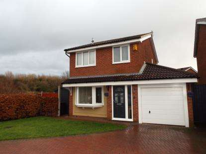 3 Bedrooms Detached House for sale in Riverway Close, Lostock Hall, Preston, Lancashire