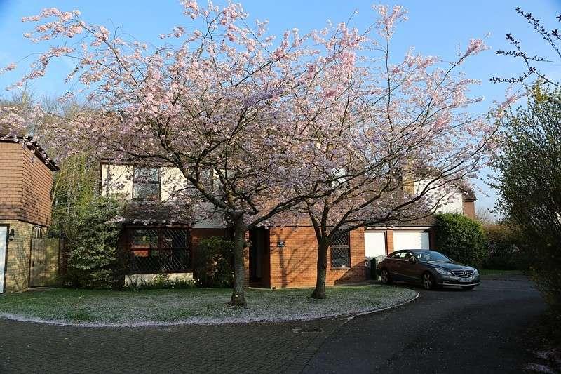 4 Bedrooms Detached House for rent in Chineham, Basingstoke