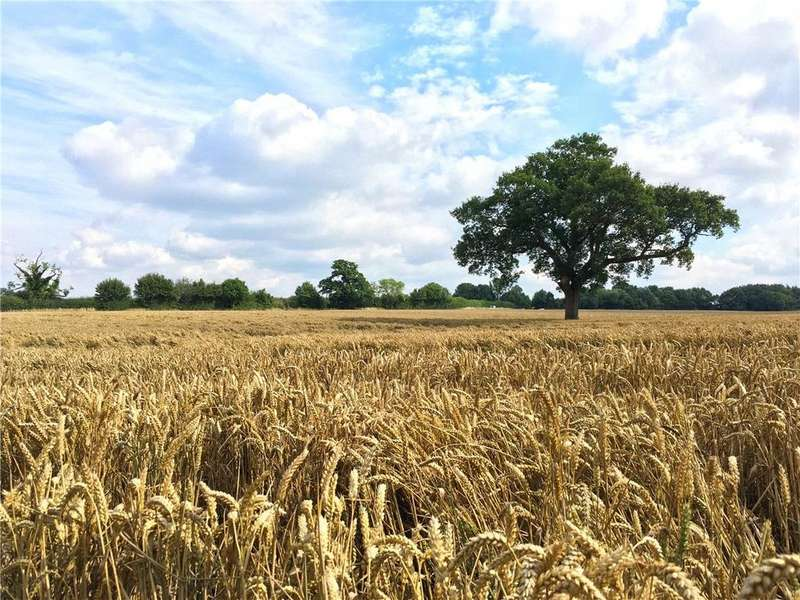 Land Commercial for sale in Merstham, Redhill, Surrey, RH1