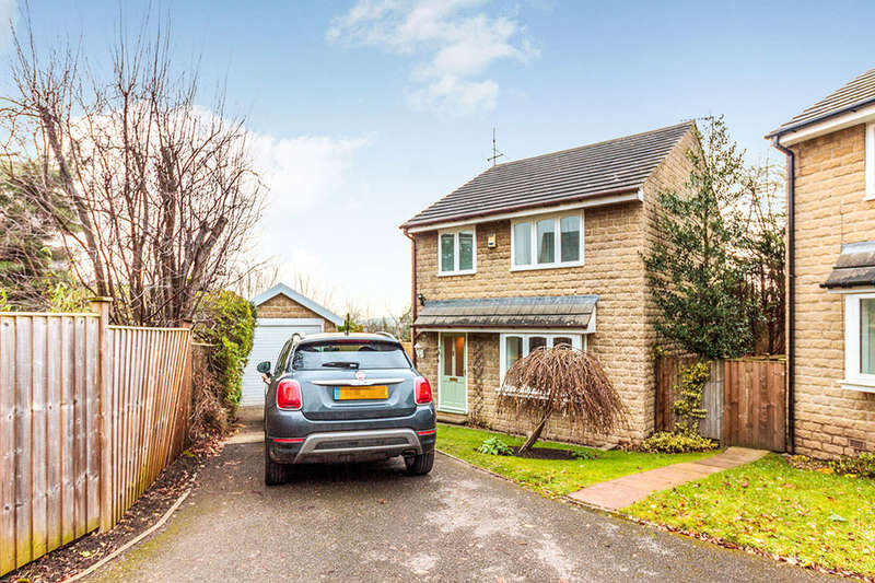 3 Bedrooms Semi Detached House for rent in Ashland Road, Sheffield, S7