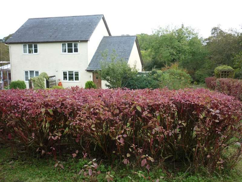 5 Bedrooms Detached House for sale in Bwlch-llan, Ceredigion, Pembrokeshire, SA48