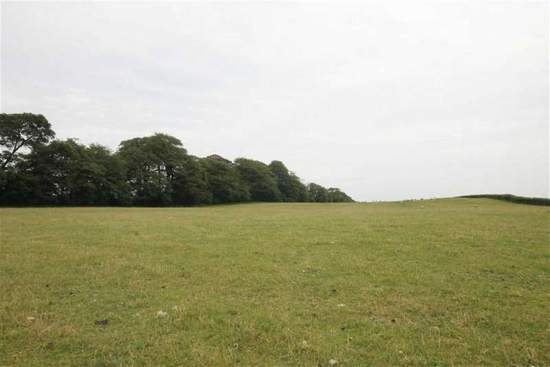 Land Commercial for sale in Cowbridge Road, Talygarn, RCT