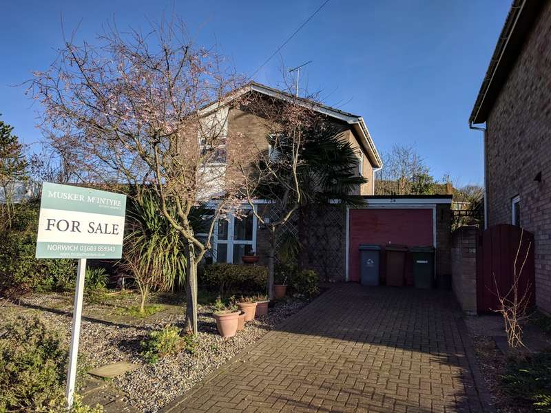 3 Bedrooms Detached House for sale in Firtree Road, Norwich
