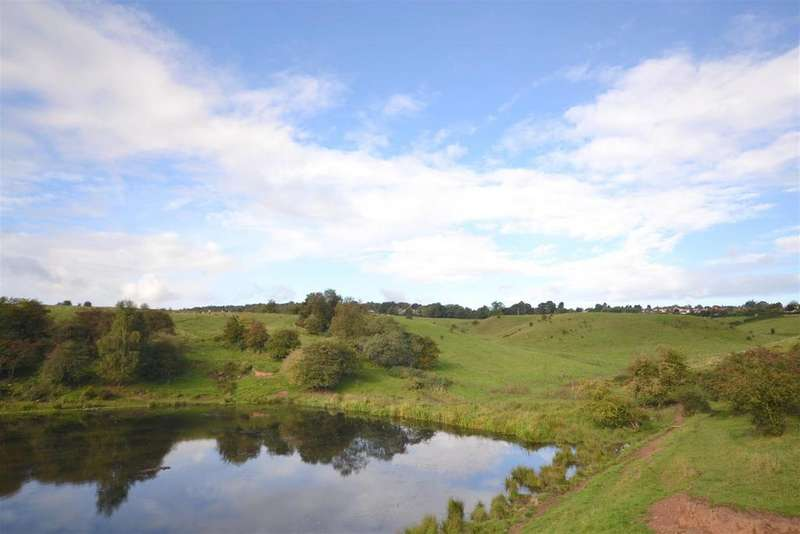 Land Commercial for sale in Five Acre Grazing Land, Ladderedge, Leek