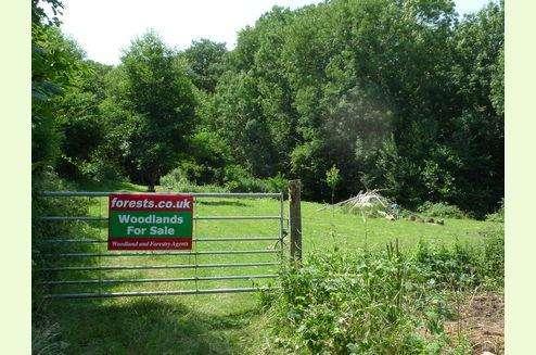Land Commercial for sale in WOODLAND, Upper Chalybeate Wood, Kilndown, Near Lamberhurst, Kent TN17