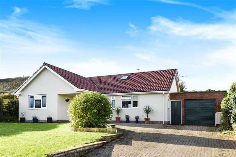 5 Bedrooms Bungalow for sale in Westaway Road, Colyton, Devon, EX24