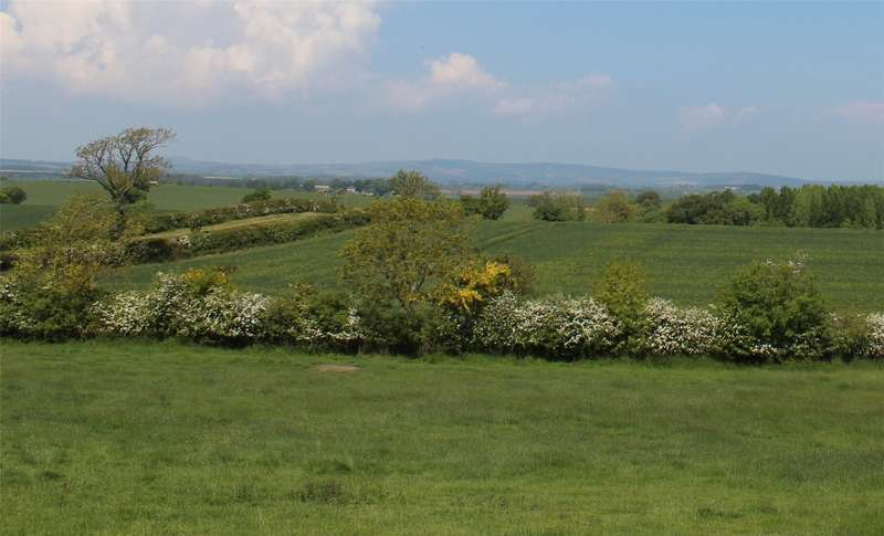 Land Commercial for sale in Plot 1 The Granary, Ruthven, Coldstream, TD12