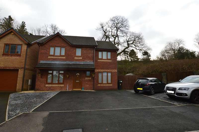 4 Bedrooms Detached House for sale in Brynamman, Ammanford
