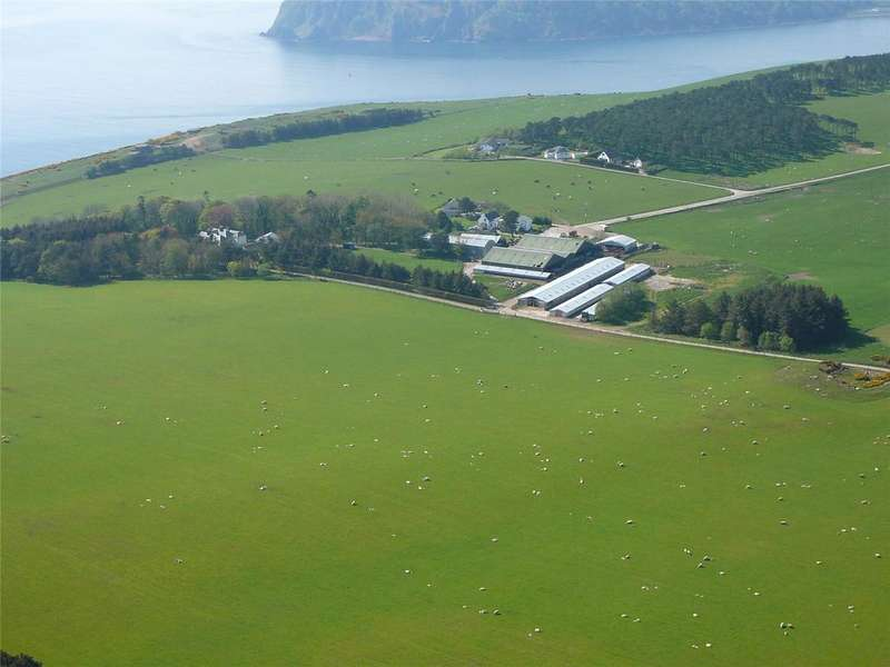 Farm Commercial for sale in Nigg, Tain, Ross-Shire