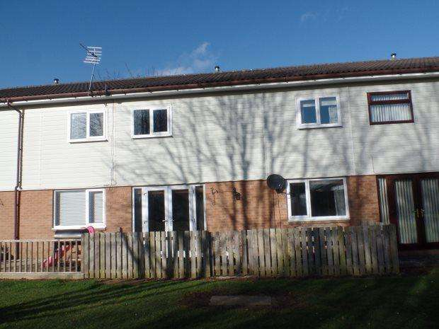 3 Bedrooms Terraced House for sale in CLEVELAND PLACE, PETERLEE, PETERLEE