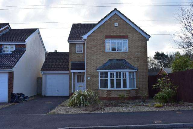 3 Bedrooms Detached House for rent in Dan Danino Way, Morriston, SA6 6PJ