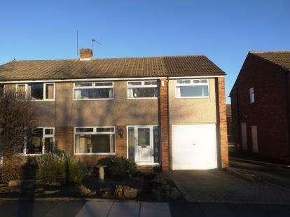 4 Bedrooms Semi Detached House for sale in Bushel Hill Drive, Darlington, County Durham