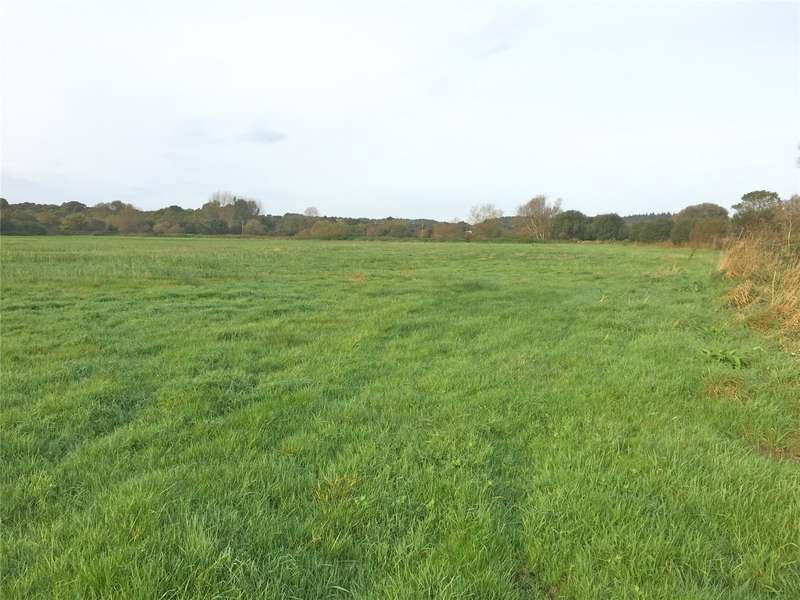 Land Commercial for sale in Bickerley, Ringwood, Hampshire, BH24