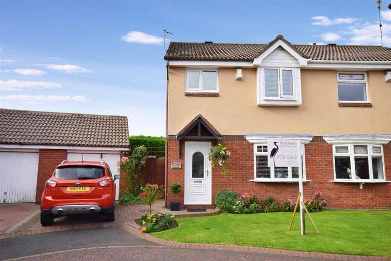 3 Bedrooms Semi Detached House for sale in The Strand, Lakeside Village, Sunderland