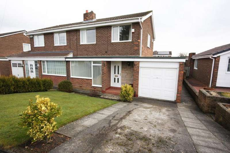 3 Bedrooms Semi Detached House for sale in Cherrytree Road, Hilda Park, Chester-le-Street, DH2 2LP
