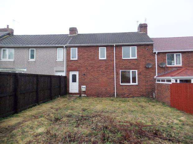 3 Bedrooms Terraced House for sale in PHALP STREET, SOUTH HETTON, PETERLEE AREA VILLAGES