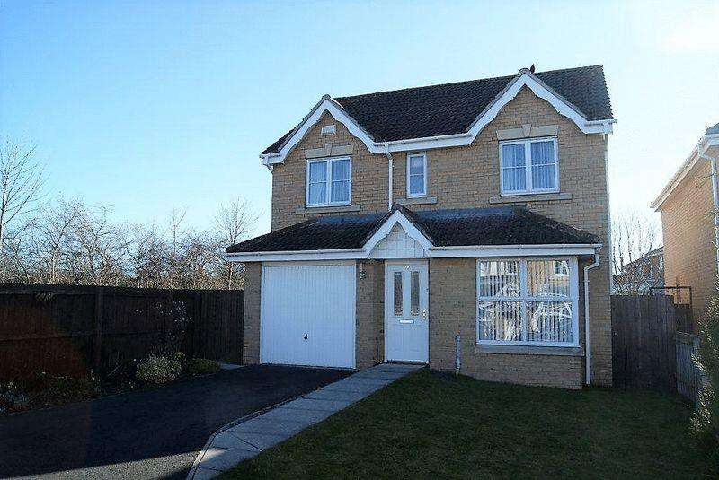 4 Bedrooms Detached House for sale in Havanna, Killingworth, Newcastle Upon Tyne