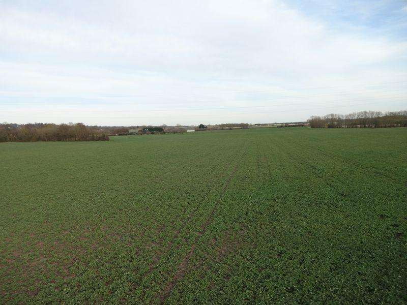 Land Commercial for sale in Redwall Lane, Maidstone