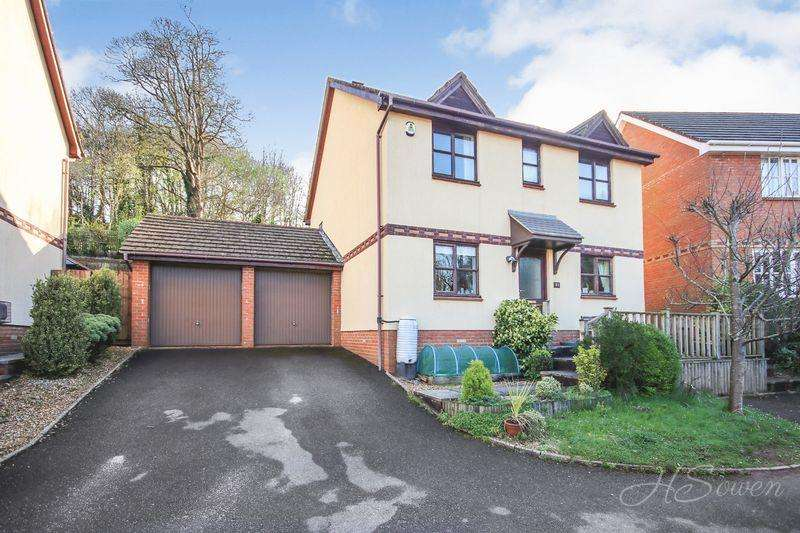 4 Bedrooms Detached House for sale in Barn Owl Close, Torquay