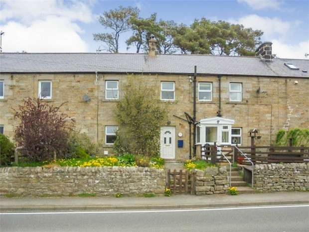 3 Bedrooms Terraced House for sale in Rochester, Newcastle upon Tyne, Northumberland