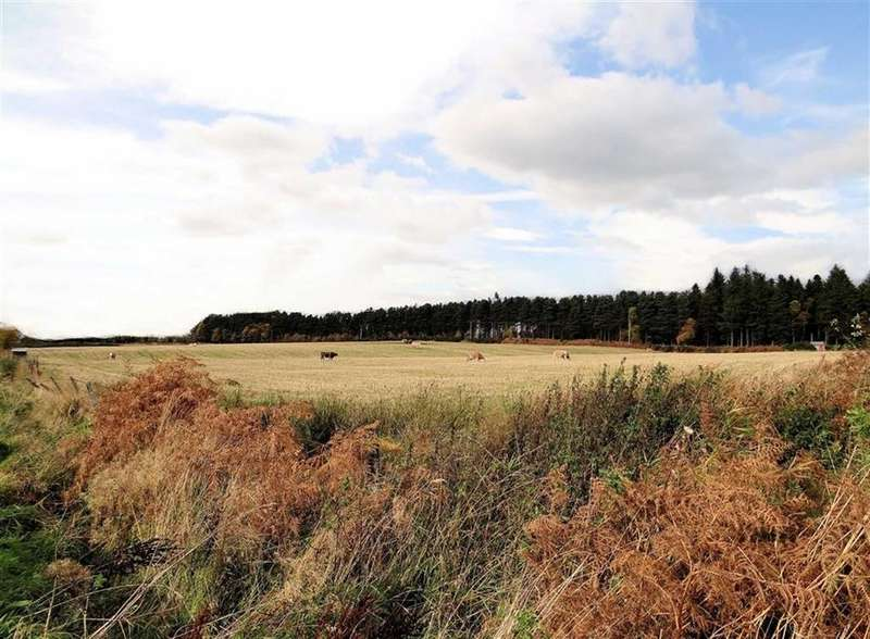 Land Commercial for sale in Other Areas
