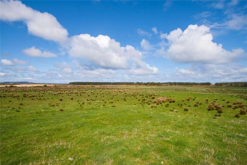 Land Commercial for sale in Lot 3 - Auchenhalrig Farm, Auchenhalrig, Fochabers, Moray, IV32