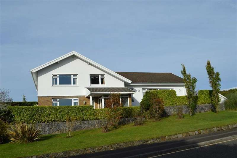 5 Bedrooms Detached House for sale in The Bryn, Swansea, SA2