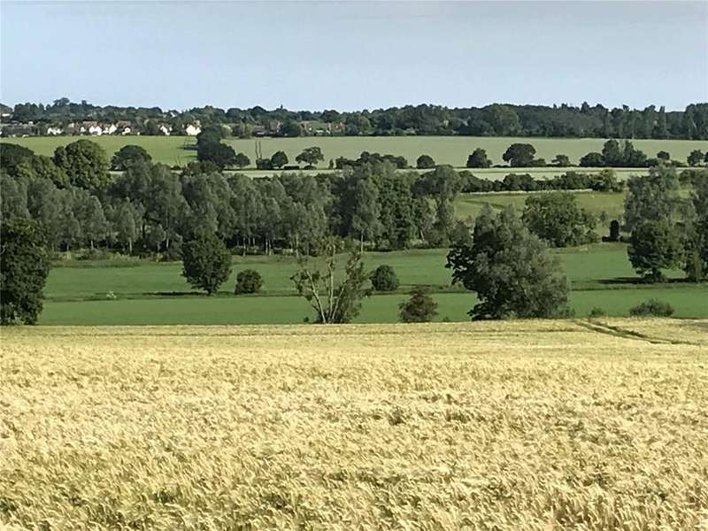 Land Commercial for sale in Belchamp Walter, Sudbury, Suffolk