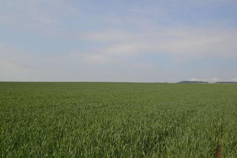 Land Commercial for sale in Stanley, Durham
