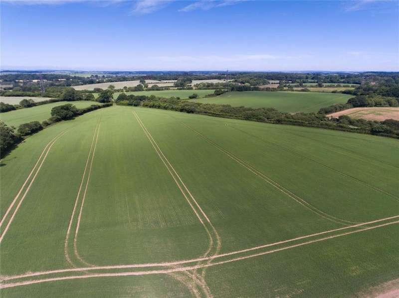 Farm Commercial for sale in Witchampton Lane, Witchampton, Wimborne, Dorset