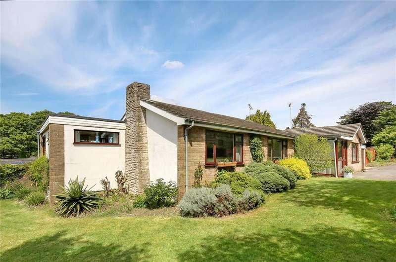 4 Bedrooms Detached Bungalow for sale in River View Close, Chilbolton, Stockbridge, Hampshire, SO20
