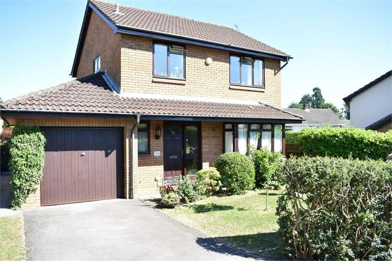 3 Bedrooms Detached House for sale in Mounton Drive, Chepstow