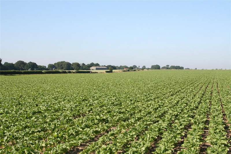 Farm Commercial for sale in Land at Deopham, Near Attleborough, Norfolk