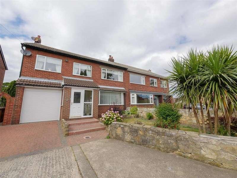 4 Bedrooms Semi Detached House for sale in Nookside Court, Grindon, Sunderland