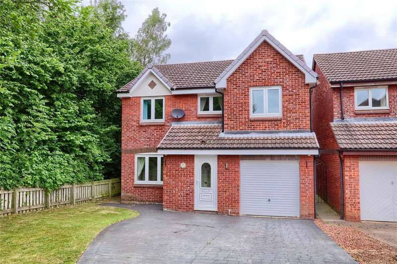 4 Bedrooms Detached House for sale in Ash Green, Coulby Newham
