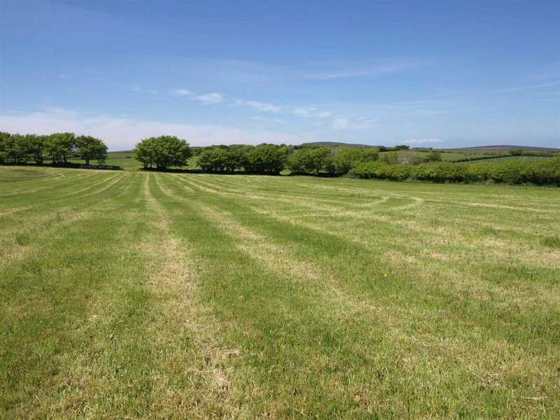 Land Commercial for sale in 31 Acres, Trentishoe, Barnstaple