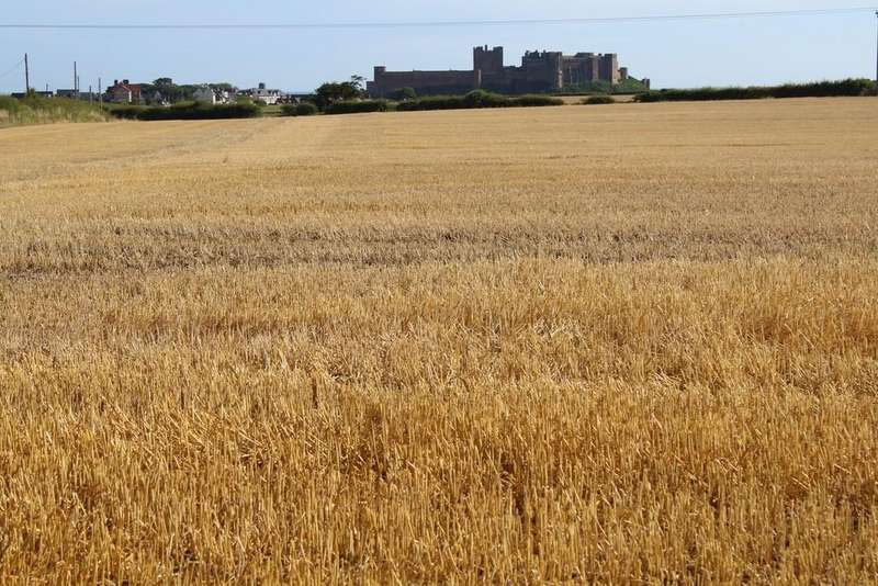 Land Commercial for sale in Land at Glororum Farm, Bamburgh