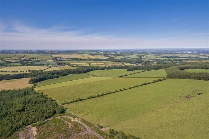 Land Commercial for sale in Langley, Burnhope, Durham, County Durham