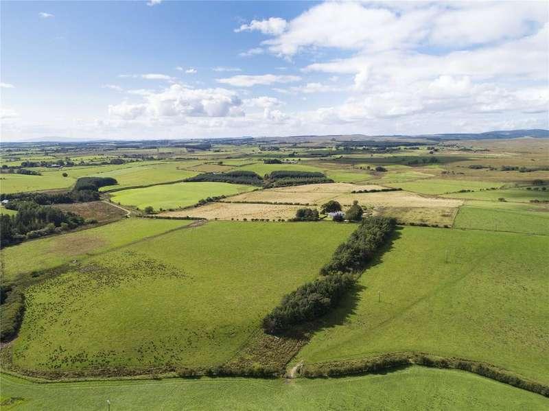 Farm Commercial for sale in The Evertown Portfolio - Lot 12, Loophill, Canonbie, Dumfriesshire, DG14