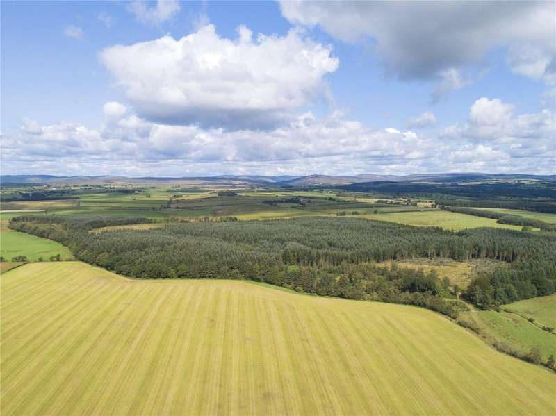 Farm Commercial for sale in The Evertown Portfolio - Lot 18, Tinnishall Forestry, Canonbie, Dumfriesshire, DG14