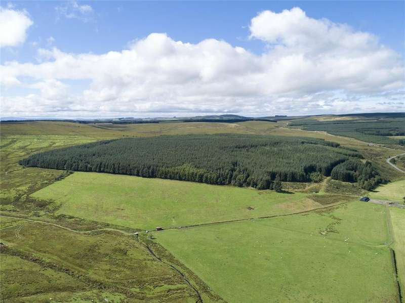 Farm Commercial for sale in The Evertown Portfolio - Lot 3, Bigholms Plantation, Langholm, Dumfriesshire, DG13