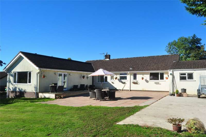 4 Bedrooms Detached Bungalow for sale in Luton, Payhembury, Honiton, Devon, EX14