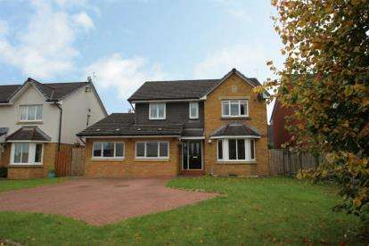 4 Bedrooms Detached House for sale in Connolly Place, Denny