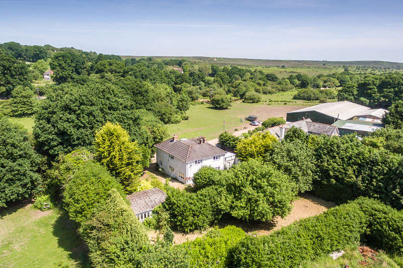 5 Bedrooms Detached House for sale in Ogdens, New Forest, Hampshire