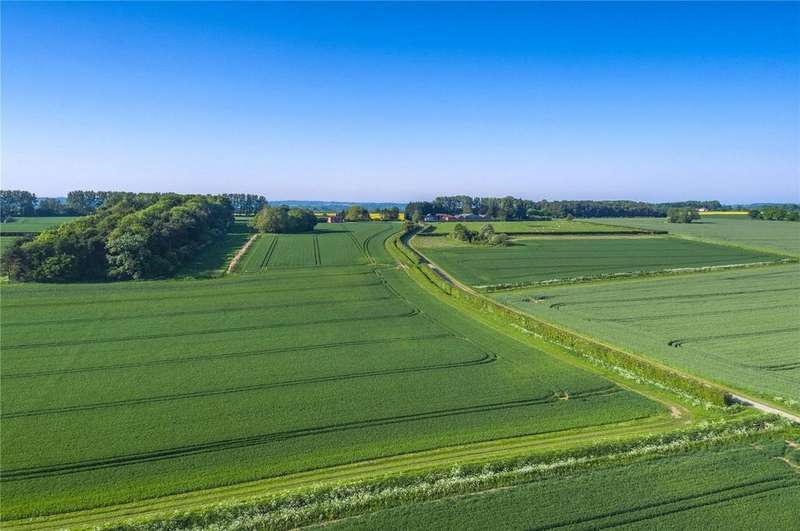 5 Bedrooms Farm Commercial for sale in Uphall Grange Farm, Ashill, Thetford, Norfolk, IP25