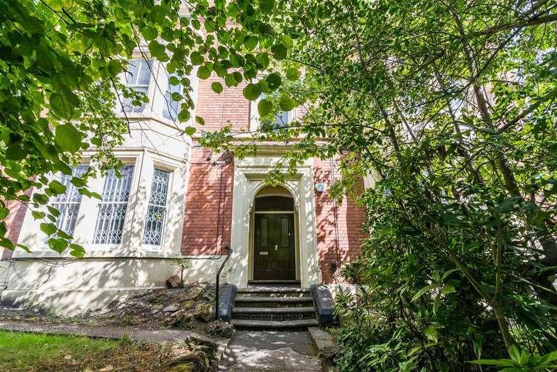 12 Bedrooms Semi Detached House for sale in Peel Street, Arboretum