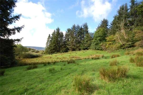 Plot Commercial for sale in Residential Plot, North East Of Shankend Cottage, Ettrick Valley, Selkirkshire, TD7