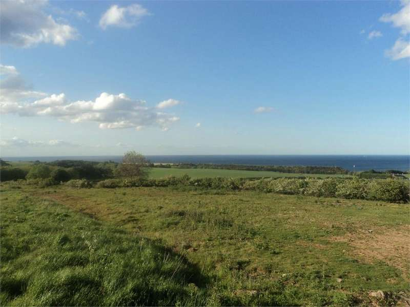 Land Commercial for sale in Chapelhill, Cockburnspath, Berwickshire, Scottish Borders