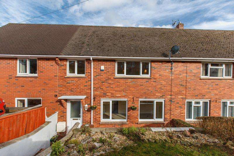 3 Bedrooms Terraced House for sale in Spruce Park, Crediton